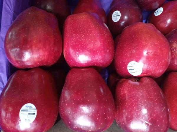 Kilo de manzana a $60 MXN