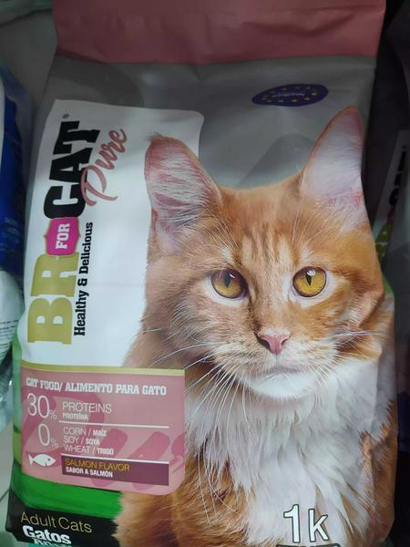 Comida para gato BR