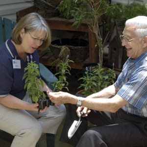Container Gardening and Senior Health
