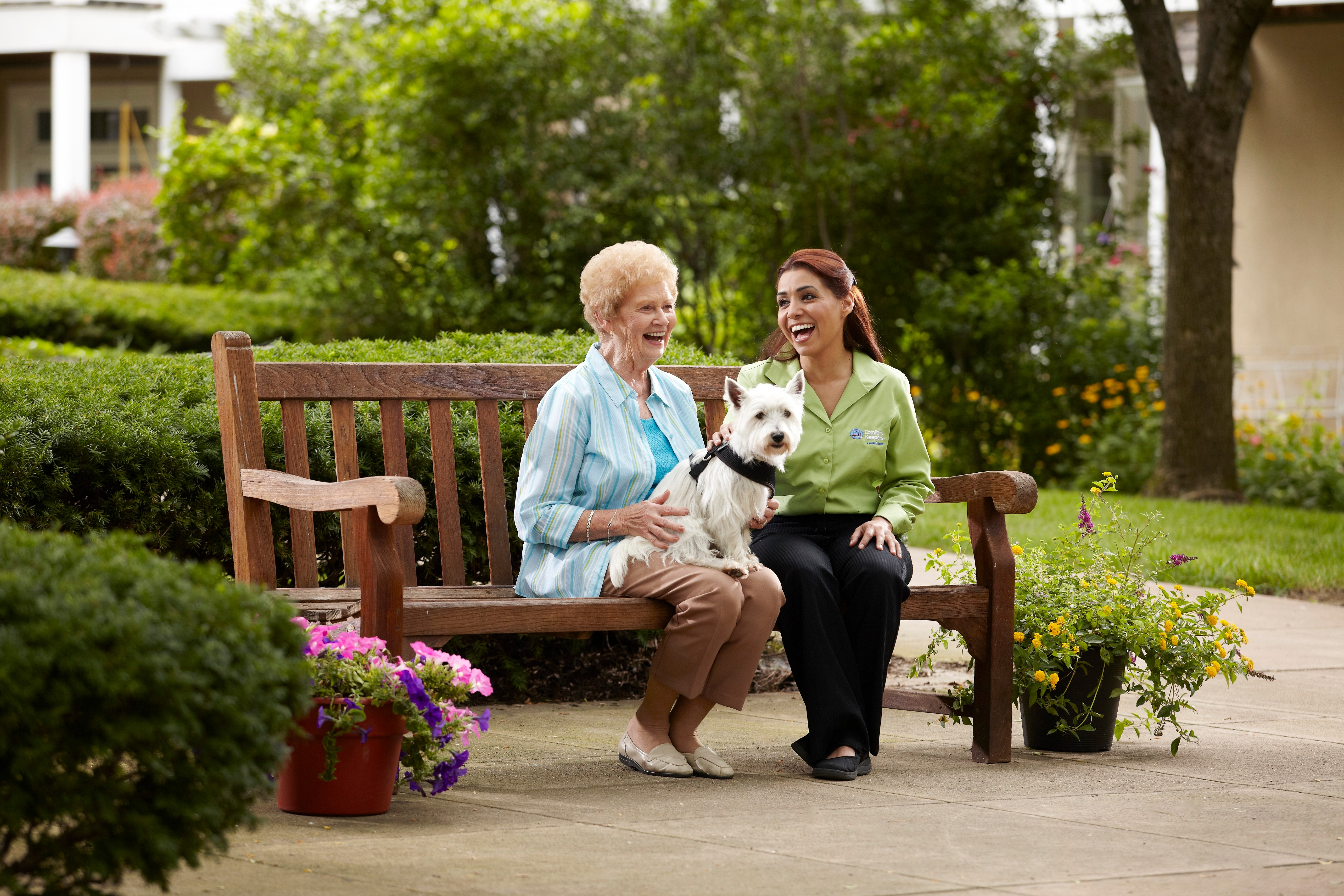 comfort keepers care before you need care