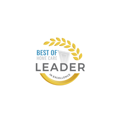 Home Care Pulse Lead in Excellence 2017