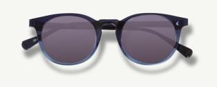 Webster Sunglasses