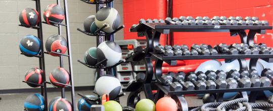 Bz Body Fitness