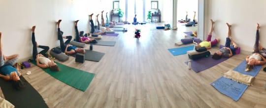 Bindu Yoga Studio