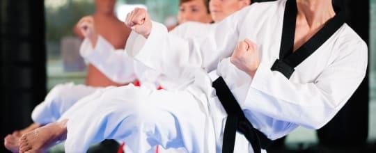 American Kenpo Karate