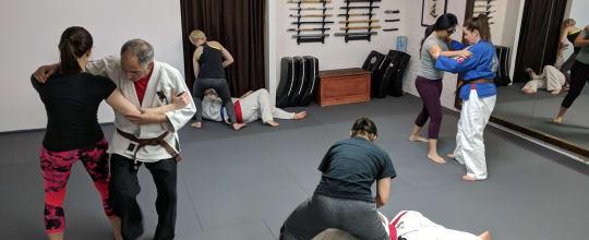Sei Shin Dojo - American Jiu Jitsu / Pekiti Tersia Kali