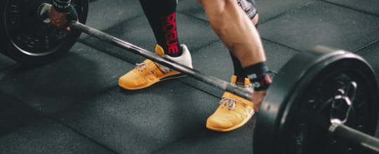 Discipline Performance Gym