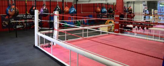 Moreno Boxing