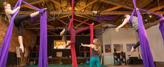 Circus Collective
