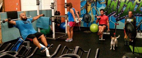 Fitness-Tek