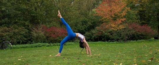 Shannon Handa Yoga