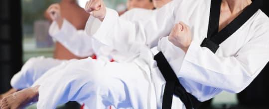 Yoshinkan Aikido Detroit