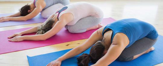 Stabile Yoga