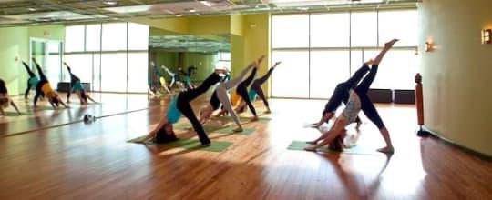 Gaia Flow Yoga