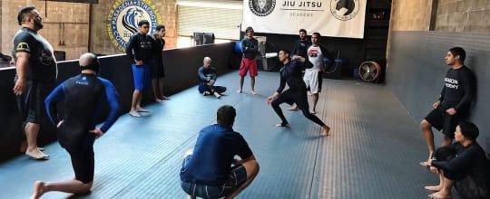 Lion Heart Jiu Jitsu Academy