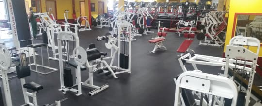 Hall of Fitness