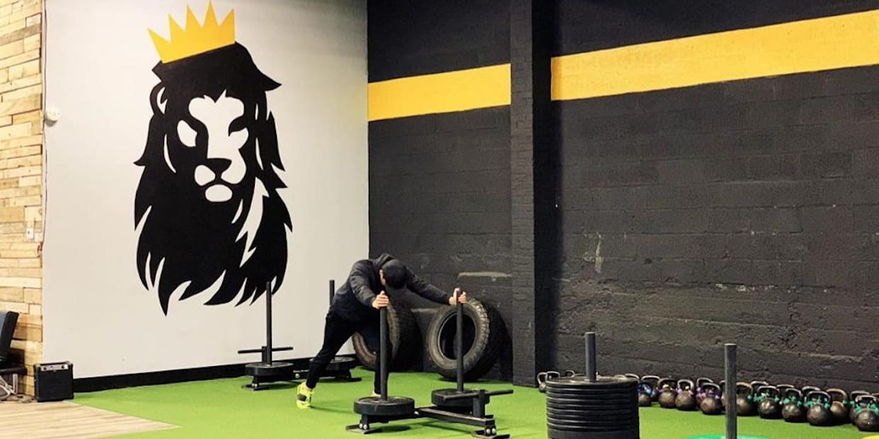 ARM FARM at King Strength and Performance: Read Reviews and