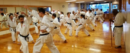 International Shotokan Karate Federation