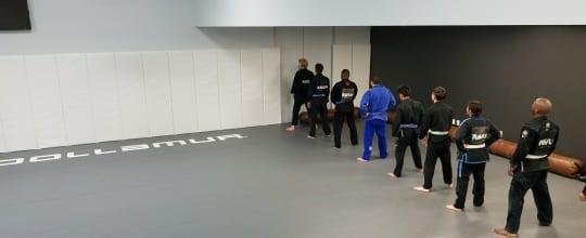 Ravlin Martial Arts