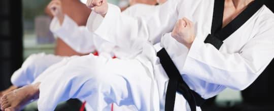 OSA Martial Arts Federation