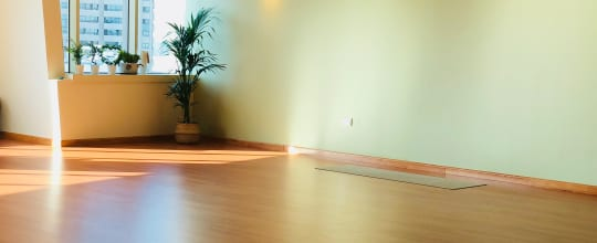 Ananda Yoga Center