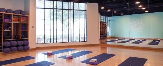 Zoga Yoga Cafe
