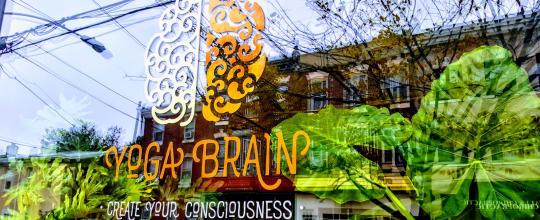 Yoga Brain