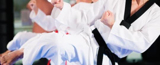 IMA Houston Karate