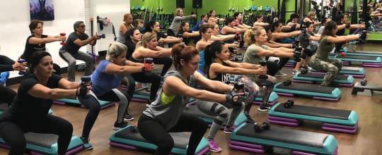 Solid Bodies Gym