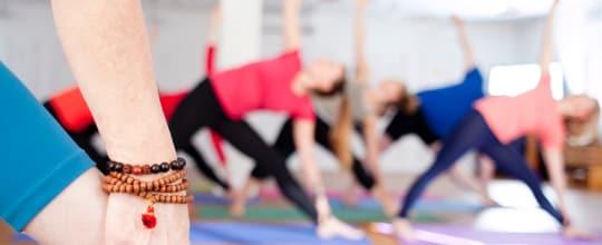Yoga Jivana