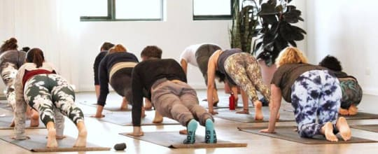 Bliss Yoga & Wellbeing