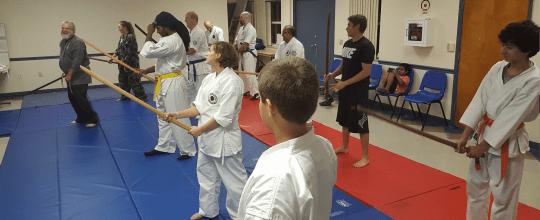 Atemi Ryu Ju-Jitsu