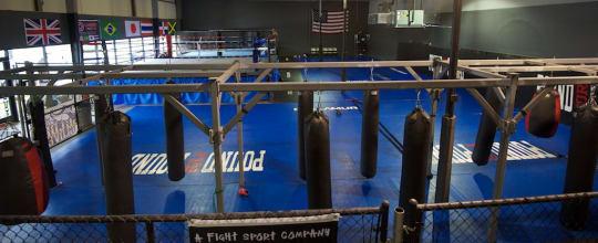 Pound For Pound - MMA & Boxing