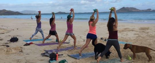 Island Flow Yoga