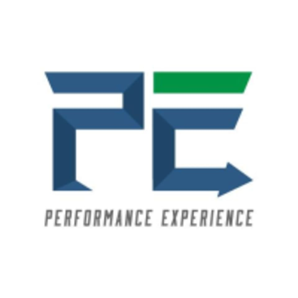 Performance Experience logo