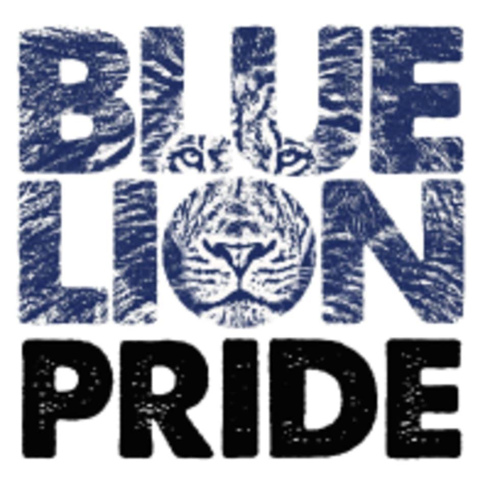 Blue Lion Fitness logo