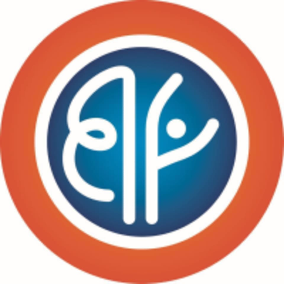 orangeblueflow logo