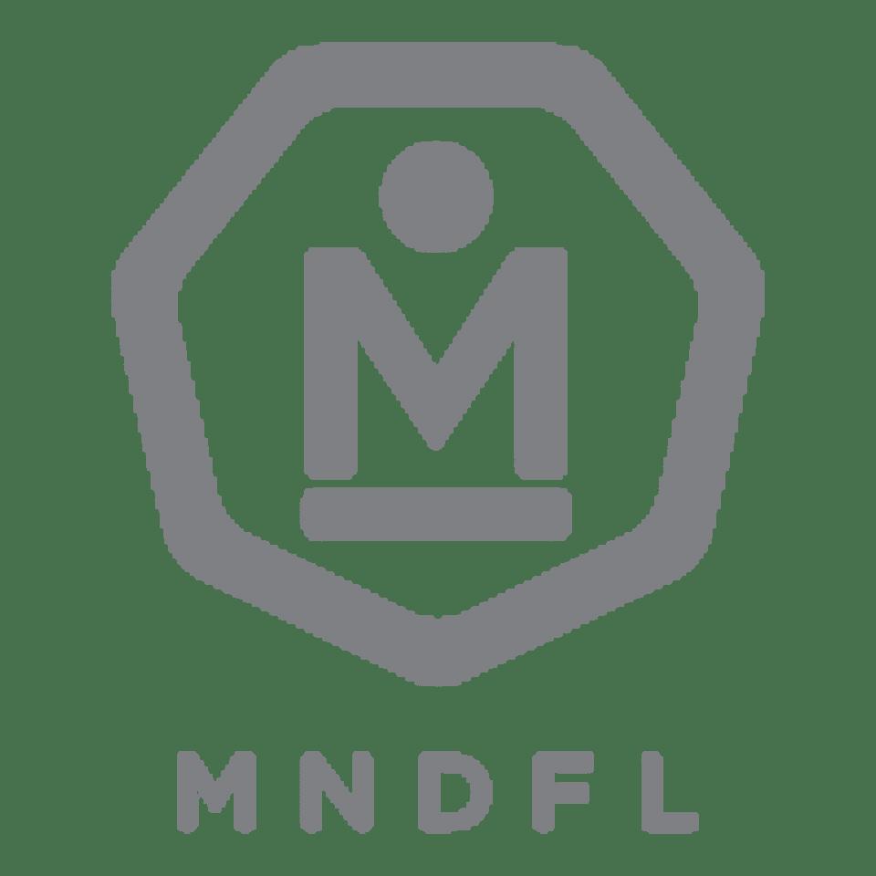 MNDFL  logo