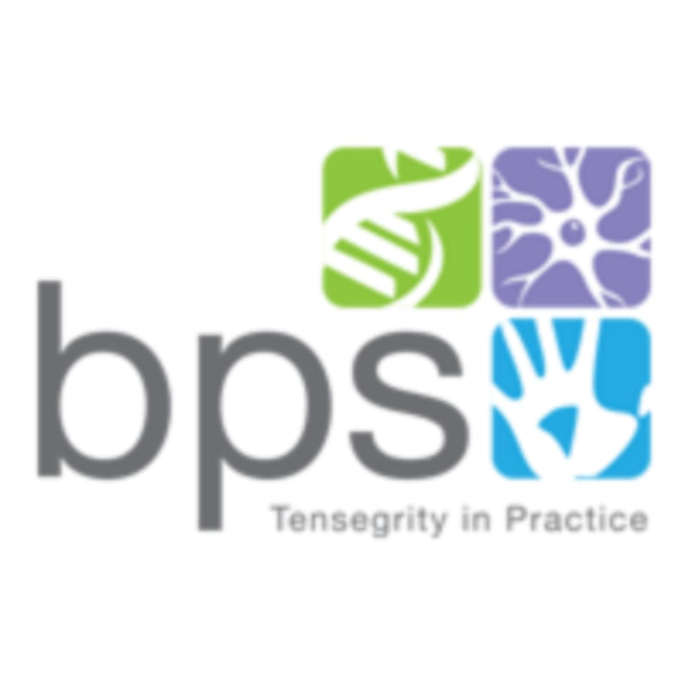BPS Tensegrity logo