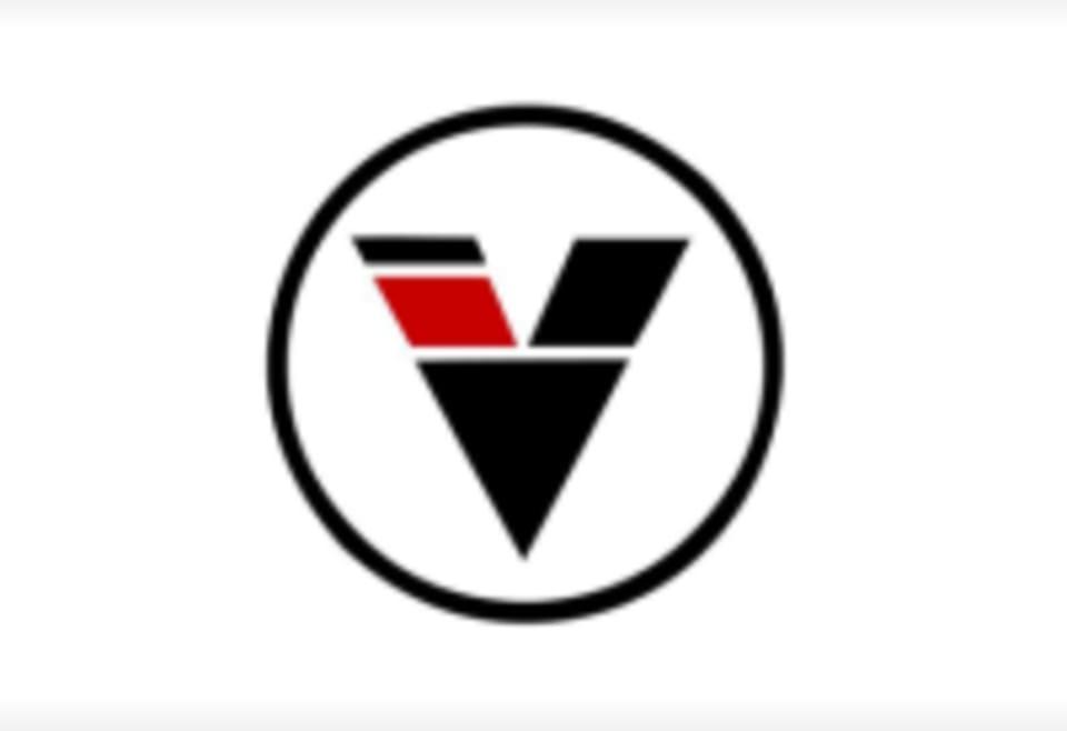 Diesel Training BJJ logo