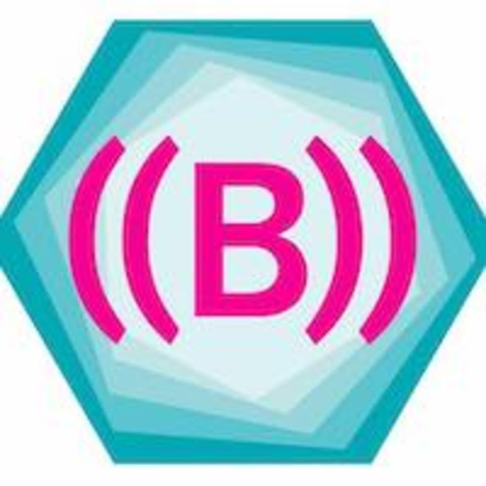 BFit Body Sydney logo