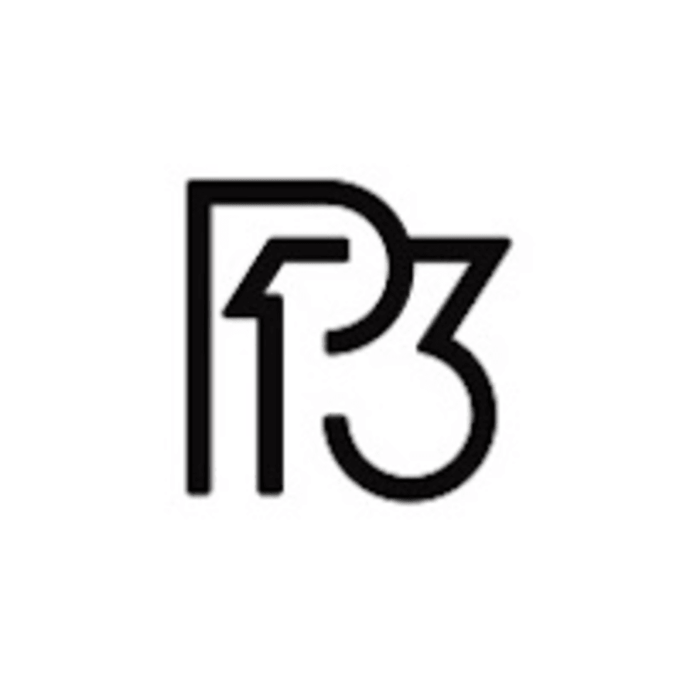 Project 13 Gyms logo