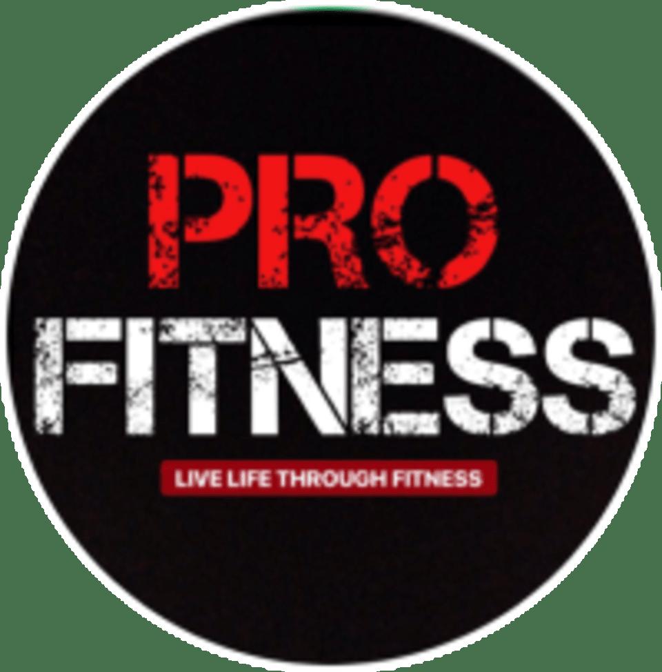 Pro Fitness SG - Clarke Quay logo