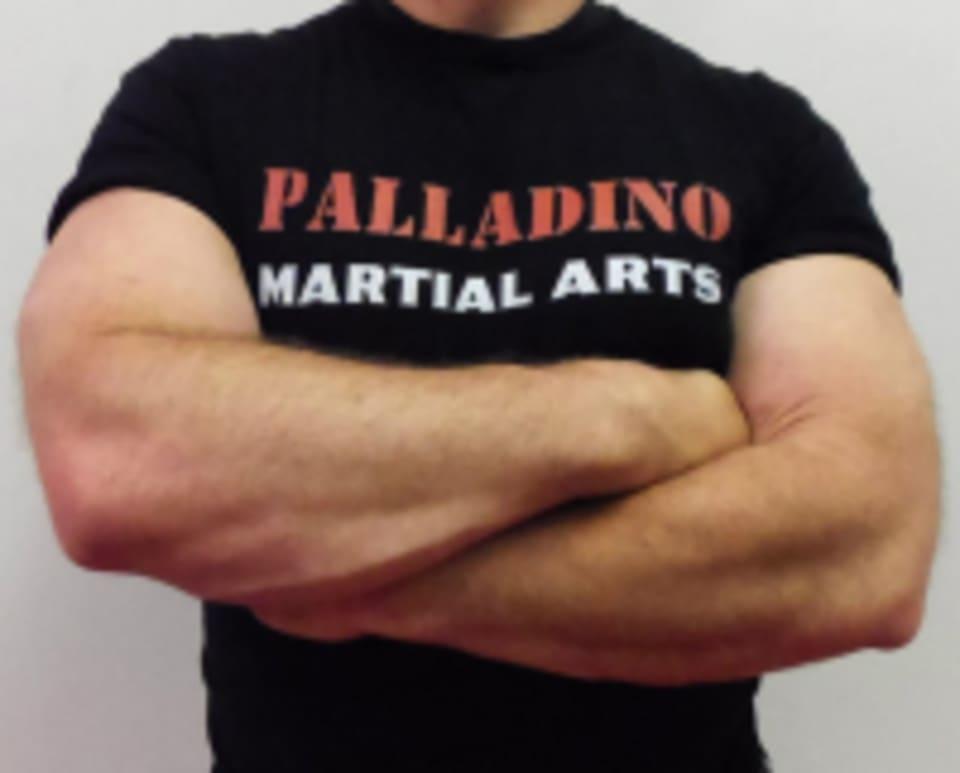 Palladino Martial Arts logo