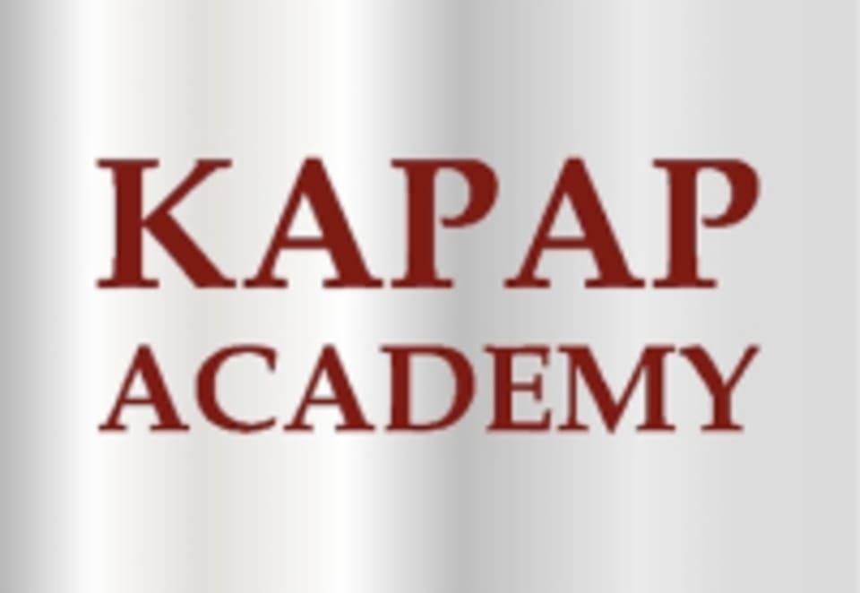 Kapap Academy logo