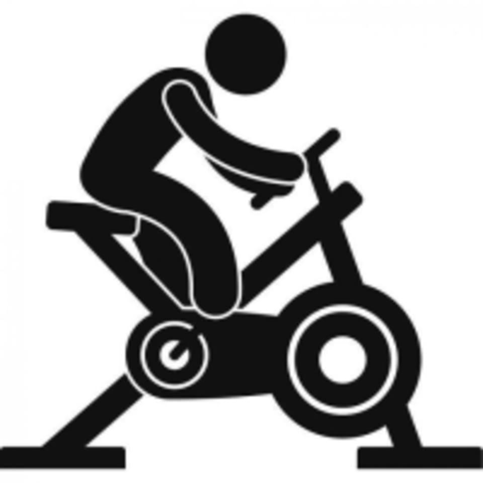 SpinGB logo