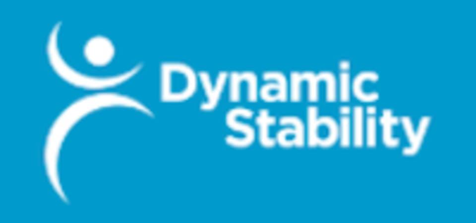 Dynamic Stability  logo