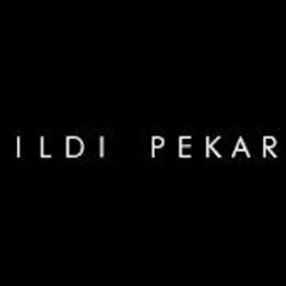 Ildi Pekar Wellness Studio logo