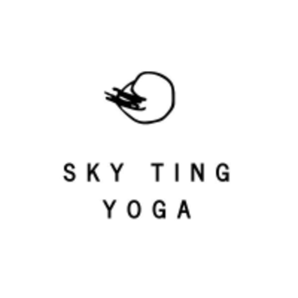 SKY TING logo