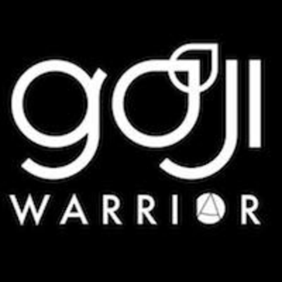 Warrior Academy logo